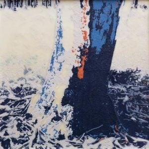 Environmental Art Prize   Carol Ann Fitzgerald, Essence